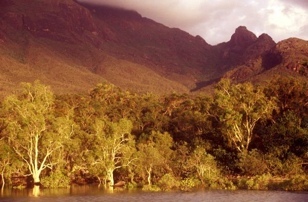 AUSTRALIA, Queensland, Hinchinbrook Island National Park. Soft morning light bathes the lagoon found on the Little Ramsey Bay