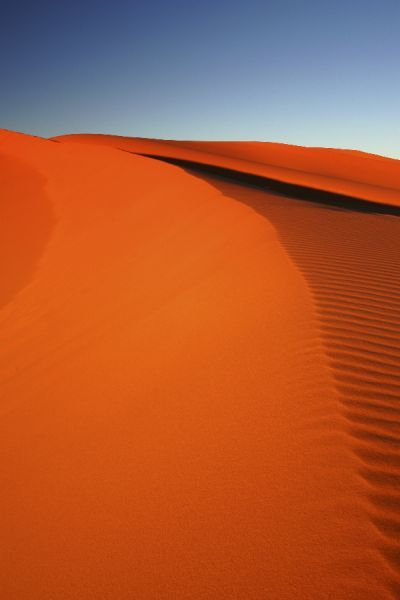 Morocco, Central Morocco, Merzouga. The undulating shapes of the dunes of the Erg Chebbi, part of the Sahara desert