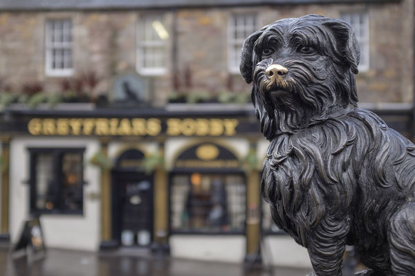 Scotland, Edinburgh, Greyfriars Bobby. Greyfriars Bobby, the famous loyal Skye Terrier who lay on the grave of his master John Gray for 14 years after his death in 1858 - Only leaving his grave briefly to find food