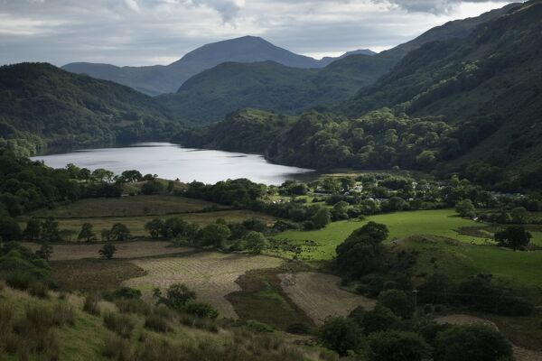 Wales, Gwynedd, Snowdonia National Park. Llyn Gwynant, a natural lake in the heart of the Snowdonia National Park