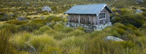 New Zealand, Canterbury, Mt Cook National Park. Stocking Stream Shelter