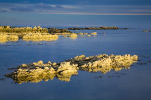 New Zealand, Marlborough, Kaikoura. Coastal limestone outcrops on the Kaikoura Pennisula