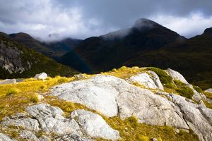 New Zealand, Southland, Fiordland National Park.