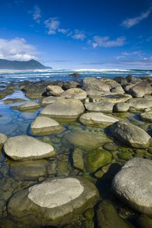 New Zealand, Southland, Fiordland National Park. The coastline of Martins Bay